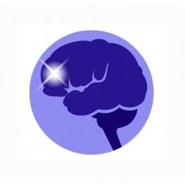 Master en Neuropsicología de las Altas Capacidades Intelectuales